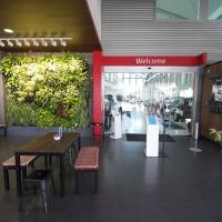 Plantability Indoor Plant Hire Green Wall Car Dealership Rockhampton