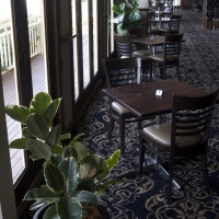 Plantability Indoor Plant Hire in Gracemere Restaurant