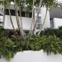 Plantability Landcaping Full Green Tropical Garden Beds