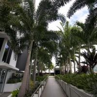 Plantability Landcaping Full Green Tropical Garden Beds along walkway