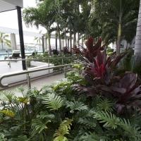 Plantability Landcaping Lush Green Tropical Garden Bed