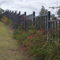 Plantability Landcaping along Fence